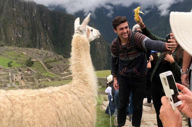 Llama Selfie Machu Picchu